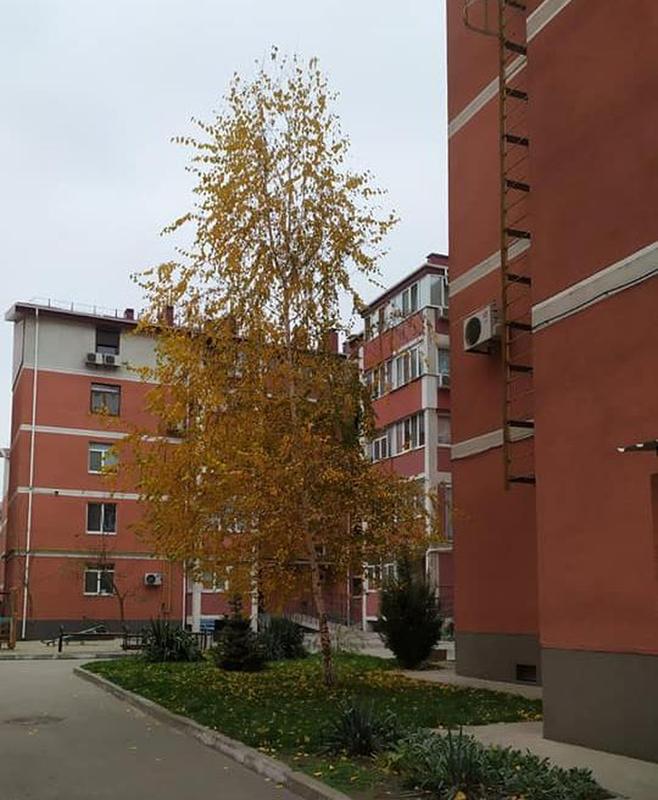 продам 2-комнатную квартиру Днепр, ул.Кобзаря, 3 - Фото 2